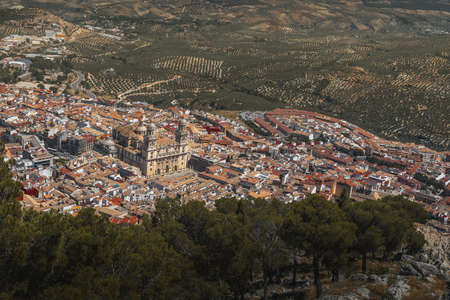 Aerial view of Jaen city with Cathedral and olive trees - Jaen, Andalusia, Spain