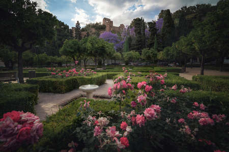 Flowers at Pedro Luis Alonso Gardens with Alcazaba Castle on background - Malaga, Andalusia, Spain