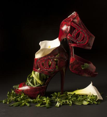Zapatos rojos de cuero de vibora, estilo sandalia con los dedos abiertos y tacos muy altos, rellenos con tallos, hojas y flores de cartucho Imagens