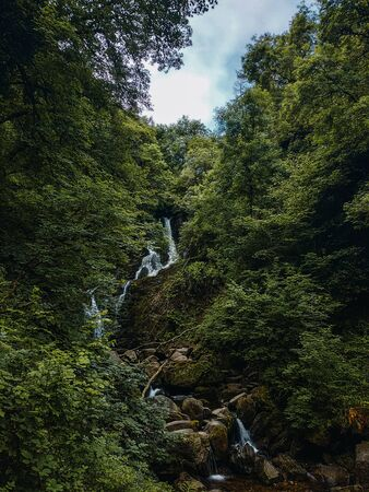 Waterfall in the middle of a stunning green forest during a spring day