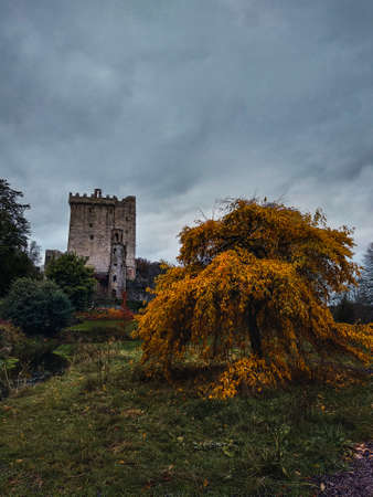Old castle on top of a hill surrounded by gardens and trees on a cloudy day Imagens - 150490456