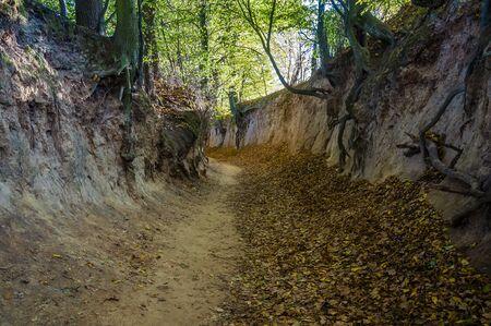 Korzeniowy Dol - the most popular gorge near Kazimierz Dolny, Poland