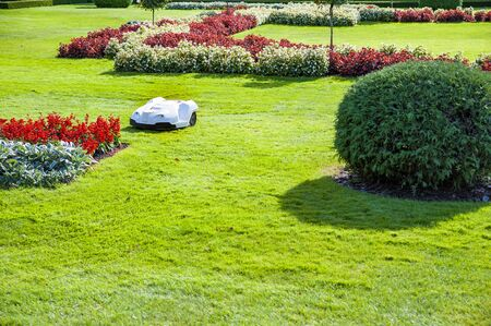 Automated lawn mower mowing grass in the garden