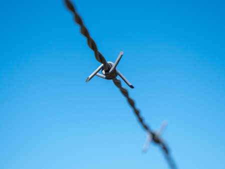 Barbed Wire Isolated on Blue Sky - A Concept for Security, Border Control, Migration Crisis