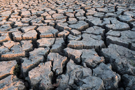 Concept for Drought - Dry, Cracked, Barren Soil at the River Bed in the Okawango Delta, Botswana