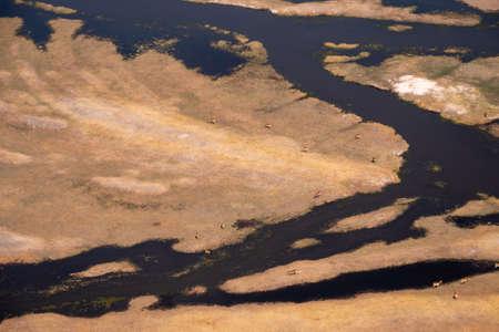 Okavango Delta Aerial with Grazing Antelopes, Dry Savanna Landscape and Watercourses Zdjęcie Seryjne