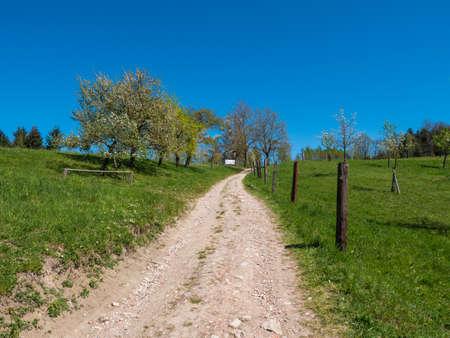 The Cherry Blossom Hiking Trail in Scharten, Upper Austria called Schartner Kirschbluetenwanderweg in German