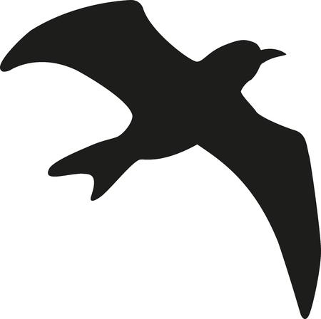 Vogel - bird