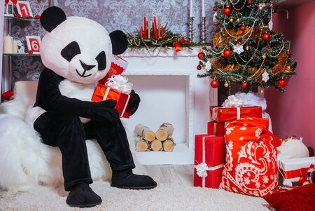 Preparing for Christmas. Fairy tale character in costume of panda sitting in the interior of the Christmas room and holding a present 版權商用圖片