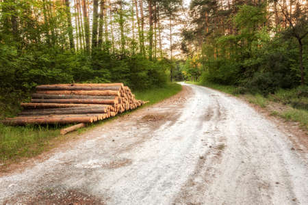 boles: Pile of tree boles lays by the forest road ready to be transported Stock Photo