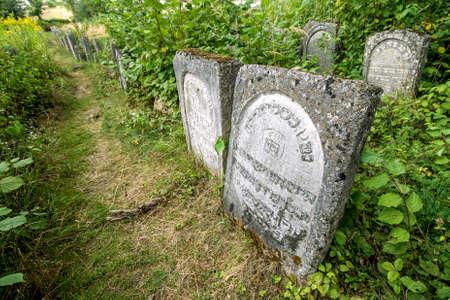 Jozefow, POLAND -August 11, 2012: Old Jewish cementery in Jozefow, Poland.
