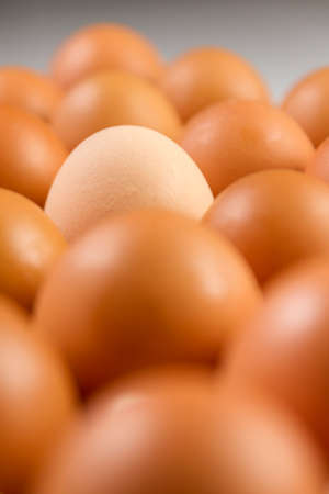 One lighter egg among dark ones concept.Close up with selective focus concept fresh eggs with copy space for background or wallpaper. Eggs on egg rack ready to use for cooking.