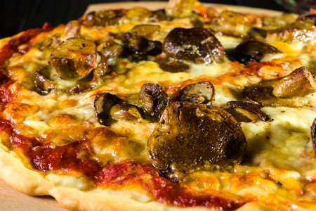 Baked pizza homemade with cheese and wild mushrooms.
