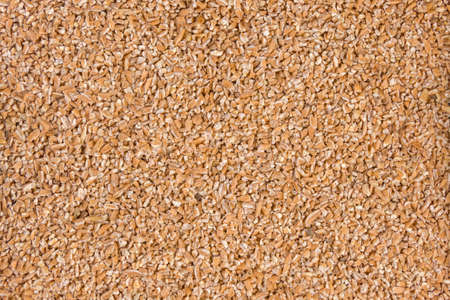crushed spelt texture background.