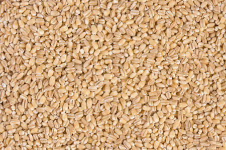 pearl barley texture background. Stok Fotoğraf