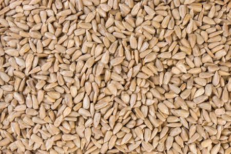 sunflower seed texture background.