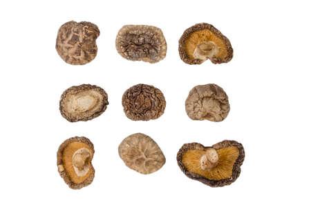 dried Shitake mushroom isolated on white background. food ingredient. Stock Photo