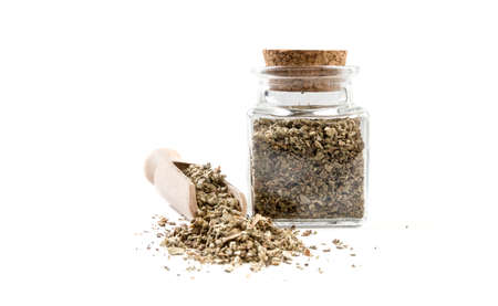 salvia or sage in wooden scoop and jar on isolated on white background. front view. spices and food ingredients.
