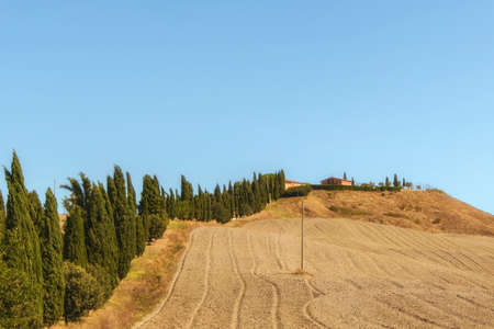 Typical landscapes for Siena Province in Tuscany, Italy. Cypress hills, plowed fields, roads and houses. Begining of autumn season.