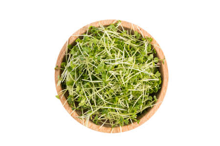 broccoli sprouts in wooden bowl isolated on white background. nutrition. food ingredient.