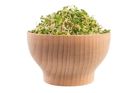 lucerne alfalfa in wooden bowl isolated on white background. nutrition. food ingredient. Zdjęcie Seryjne