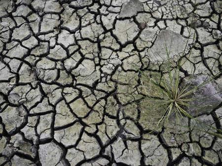 soli: Crack Soil