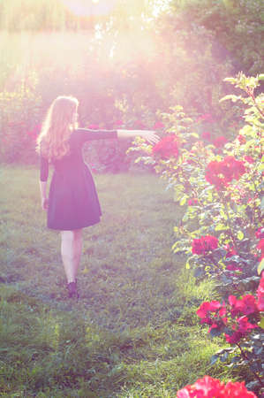 auburn hair: Young woman with auburn hair walking near rose bushes in the sunset light