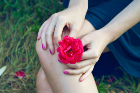 hot pink: Girl holding a hot pink rose on her lap
