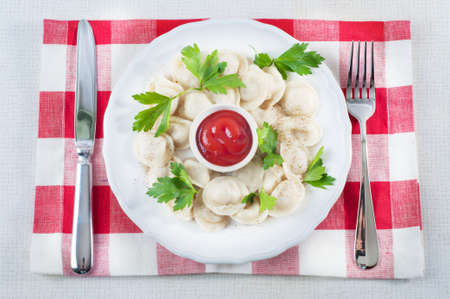 freshly cooked: Freshly cooked ravioli with ketchup and parsley leaves served on a white dish