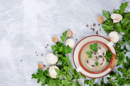 녹색 파 슬 리, 빵 croutons와 고추 회색 배경에 장식하는 신선한 으깬 버섯 수프
