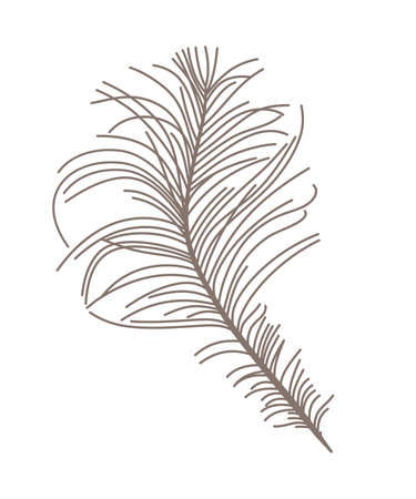 Feather. Vector silhouette.