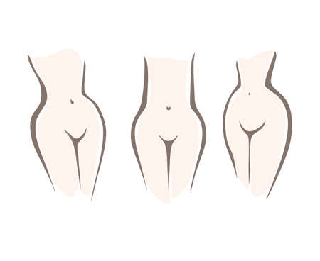 Set with nude attractive woman silhouette torso. Three types of female figure, the middle waist, low waist, high waist. Sketch of woman naked body.