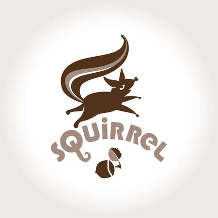 Squirrel. Vector template jumping squirrel and nutlet. Logo squirrel.