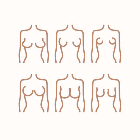 Different types of female figures. Six options for the shape of the female breast. Breast icon concept drawing line icon in modern style. Vector illustration.