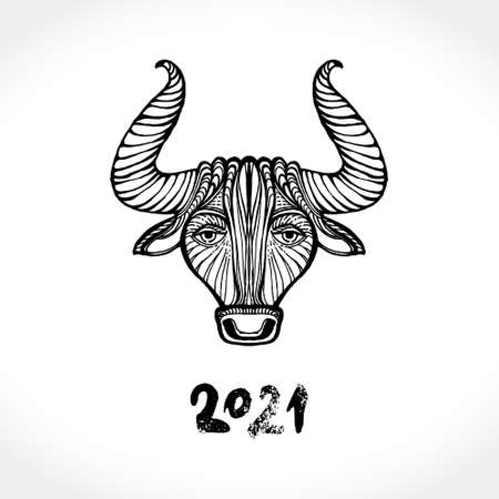 Year of the Ox. Pattern cow vector illustration. Chinese New Year 2021 Greeting Card. Illustration of year of the Ox. Black ink brush calligraphy 2021. 일러스트