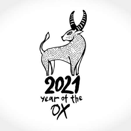 Year of the Ox 2021. Outline vector illustration. Chinese New Year Greeting Card. Illustration of year of the Ox. Black ink brush calligraphy 2021. 일러스트