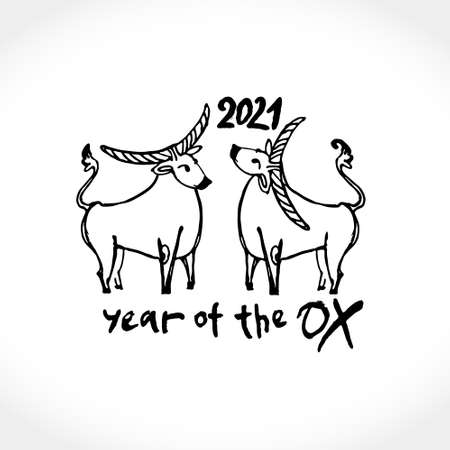 Year of the Ox 2021 sketch vector illustration. Black ink brush Two cute cows are drawn. Illustration of year of the Ox 2021 Chinese New Year. 일러스트