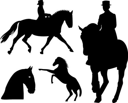 bridle: Horse silhouette on white background