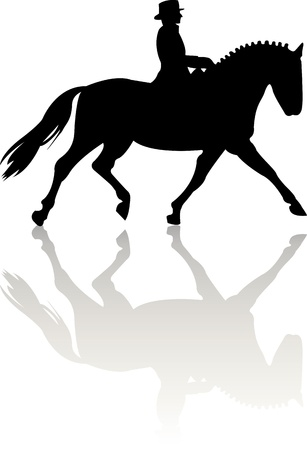 Horse silhouette on white background