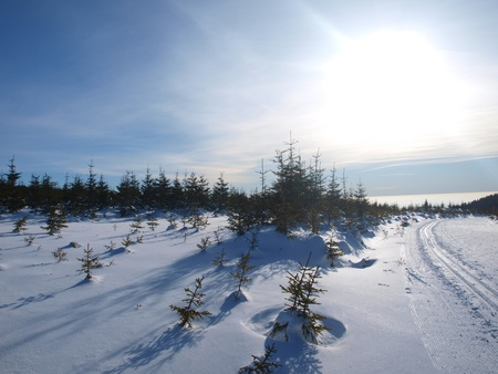 Winter panorama of Krkonose mountains, Czech Republic Stock Photo - 13457040