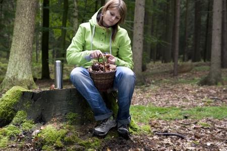 Basket full of freshly picked mushrooms