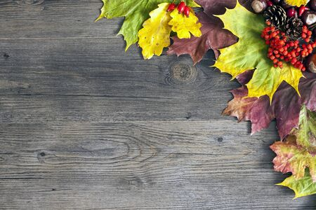 Autumn leaves over wooden black background