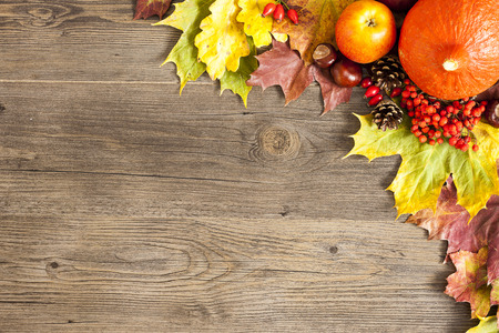 Color autumn leaves over wooden black background