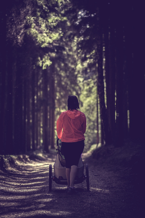 Young fit women walking and jogging outdoors in wood