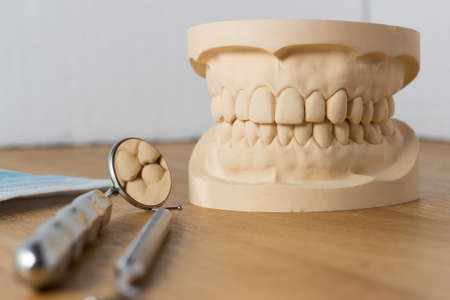 dental mirror: Dental mold of a set of false teeth with dental tools on a wooden table Arranged so did the mirror reflects the teeth in a dentistry and healthcare concept