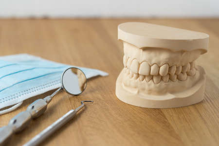 Dental mold showing the teeth of the upper and lower jaw with dental tools and a face mask on a wooden table in a dental care and examination concept photo