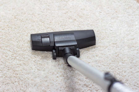 saprophyte: High angle view looking down the handle of a modern vacuum cleaner being used to vacuum a long pile carpet white