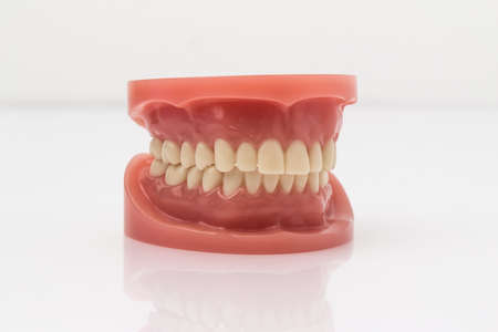 prosthodontics: Set of artificial lower and upper jaw false teeth viewed low angle across a wooden table with copyspace