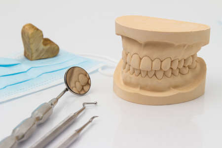 lower teeth: Dental mold showing the teeth of the upper and lower jaw with dental tools and a face mask on a wooden table in a dental care and examination concept Stock Photo