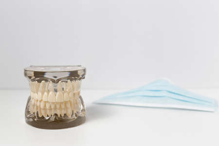 safety mask: Set of dentures model with clear gum mold next to safety mask for dentistry teaching concepts